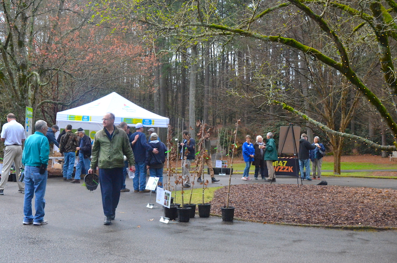 March Events Not to Miss in Hoover
