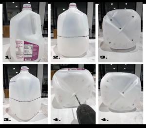 Winter Sowing Milkweed using milk jugs 1