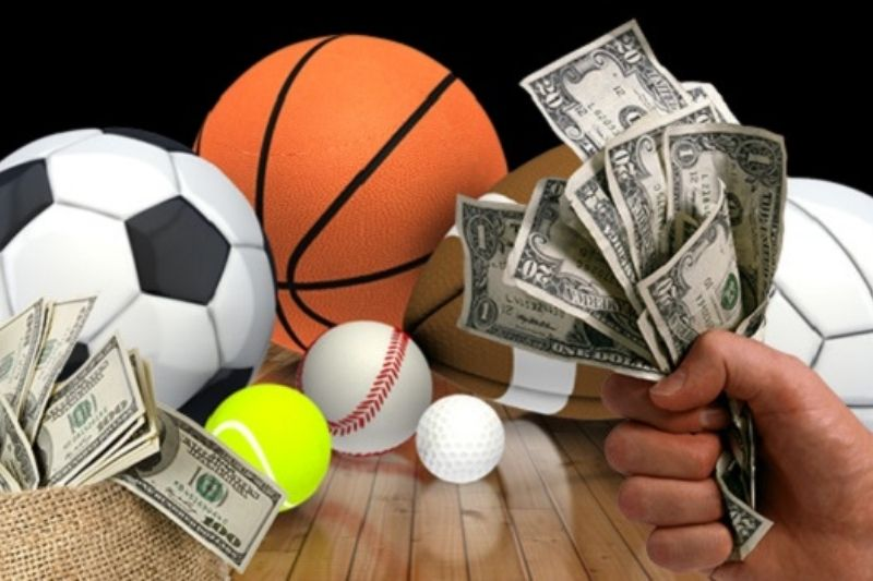 Betting Sites in India