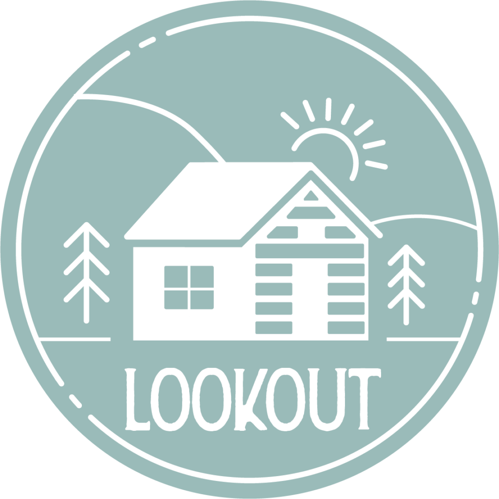 lookout icon