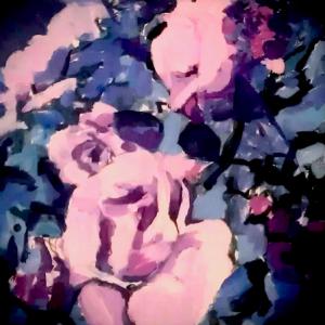 Plaid Roses