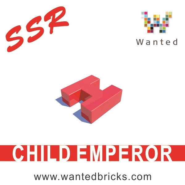 SSR-CHILD-EMPEROR-3D-PRINTING-BUILDING-BLOCKS