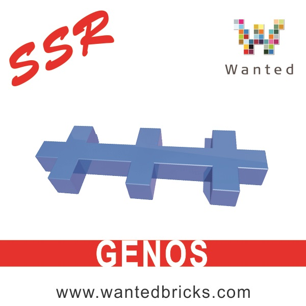 SSR-GENOS-3D-PRINTING-BUILDING-BLOCKS