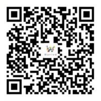 wantedbricks alipay donate