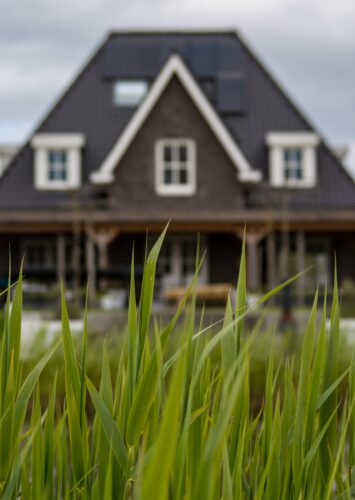 Tips For Buying A Healthy Home