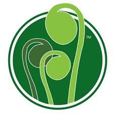 Fiddlehead Logo round