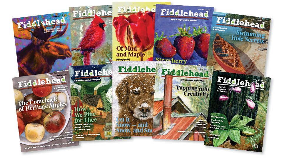 10 fiddlehead edition covers