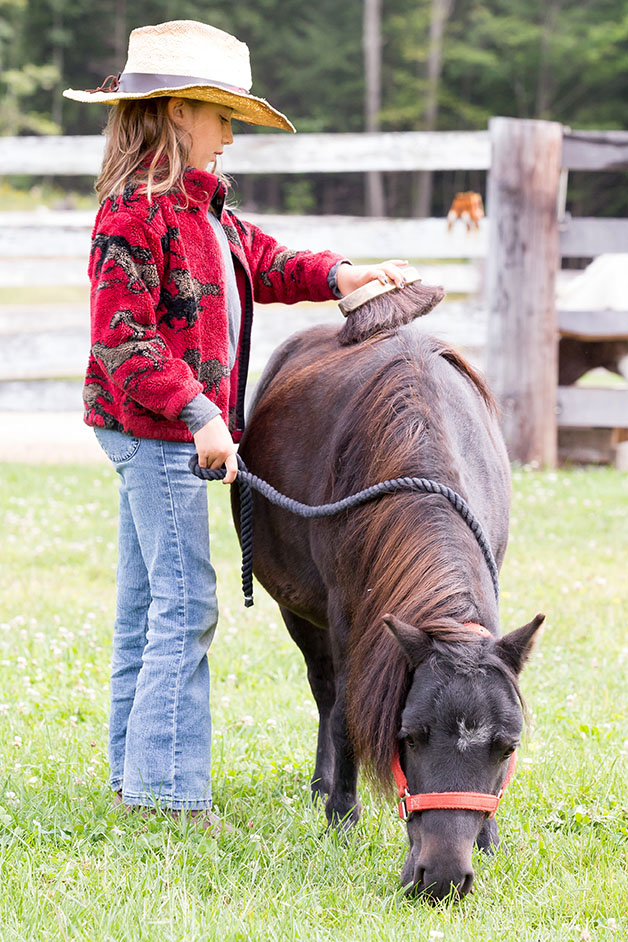 Vera, 8, grooms rescued mini-horse Blackie this past summer. Vera volunteers with her grandmother, who has now begun the process of adopting Blackie for Vera.