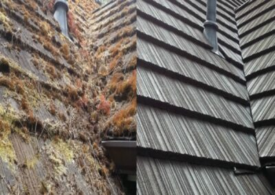 Residential Roof Cleaning Services in Martinsburg