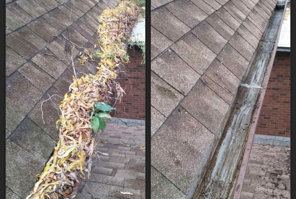 DIY Gutter Cleaning vs. Professional Services