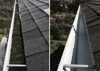 Professional Gutter Cleaning in Martinsburg, West Virginia