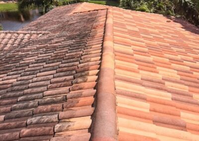 Professional Roof Cleaning Services in Martinsburg
