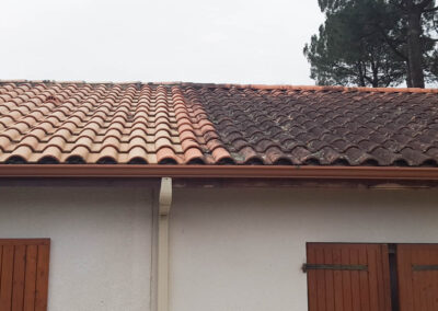 Roof Cleaning Services in Martinsburg