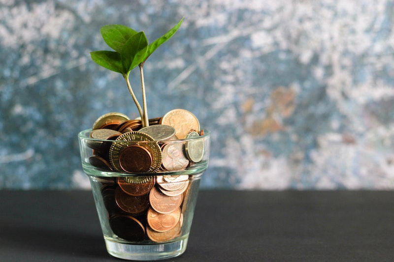 Jar of coins with tree sprouting up