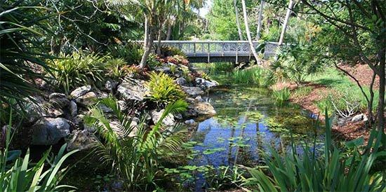Mounts-Botanical-Garden