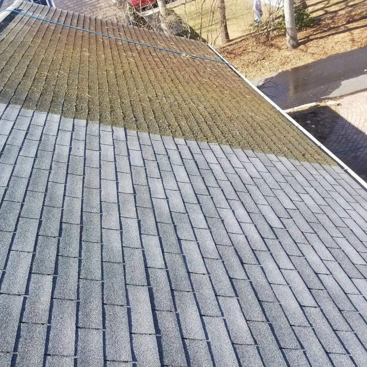 roof cleaning service near me