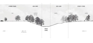 Rendered section showing one proposed planting typology along the bayous which may include lawn, meadow, and woodlands.
