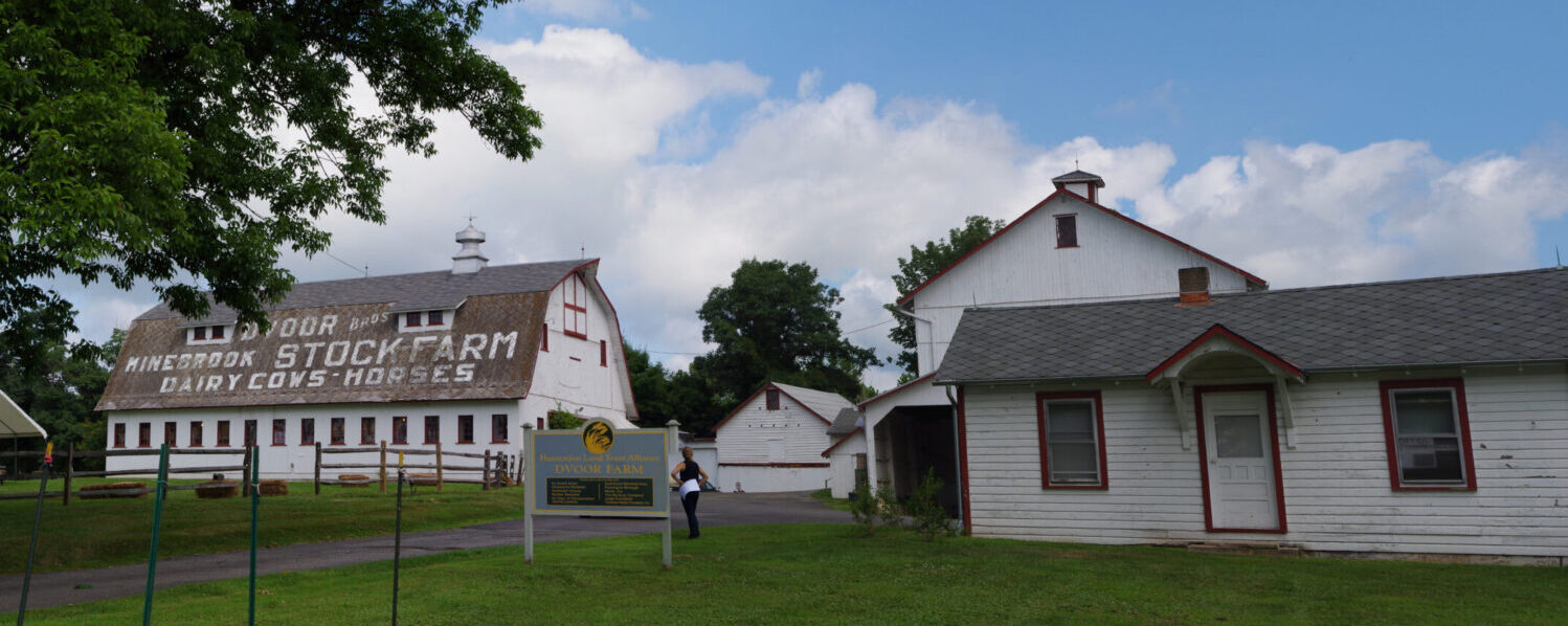 Panoramic photograph of the entrance to Dvoor Farm with the main farm driveway and buildings to either side.