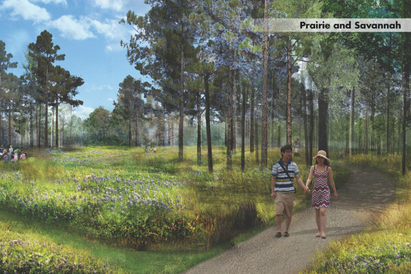 Illustrative rendering of a prairie landscape at HANC with tall grasses and some trees. A couple holding hands is walking on a path through the landscape.