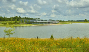 A field of yellow flowers are blooming in the foreground, with the rest of the photo looking out over the lake to the park's Event Center.