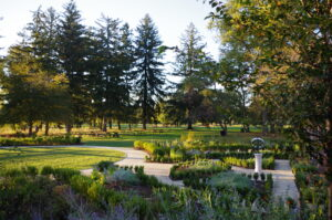 Beyond the heavily planted gardens, a group of picnic tables are in the lawn surrounded by tall pine trees.