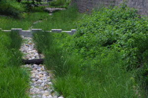 Green sedges and shrubs flank a riverstone channel that continues into the background. A short concrete weir is partway down the stone channel.