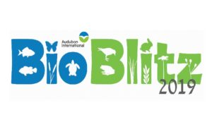 Audubon International's BioBlitz