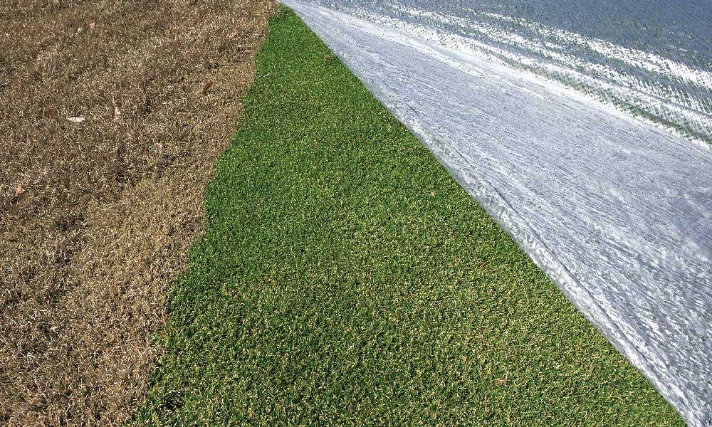 Evergreen Turf Covers