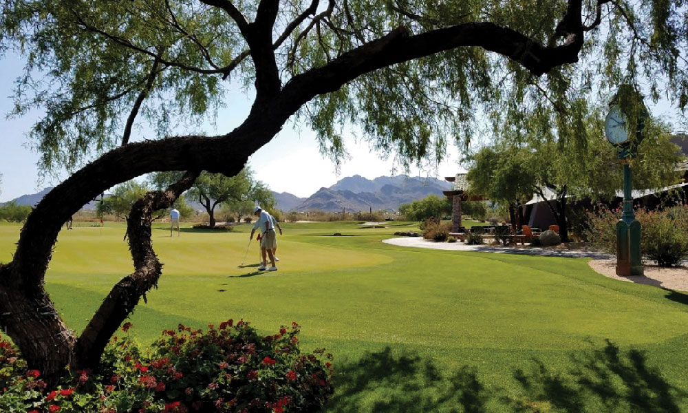 Biofeed Turf - Grayhawk Golf Course