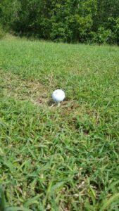 Jolly Roger Golf Club