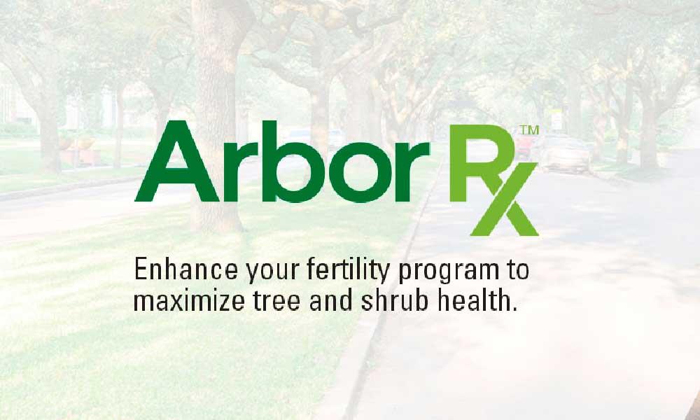 Arbor RX