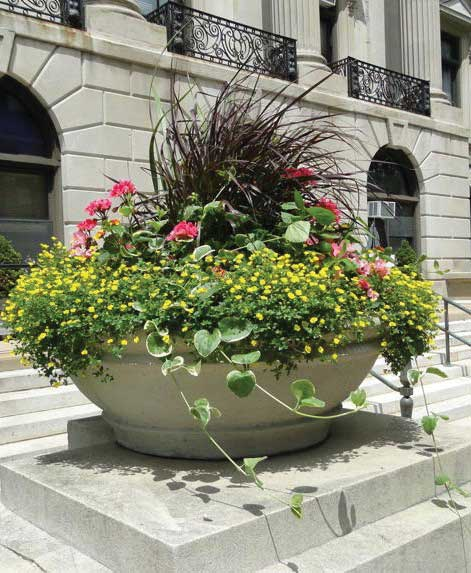 City Hall planters by Brookfield Company