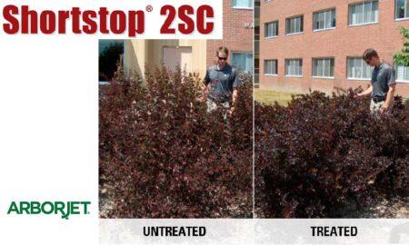 Shortstop 2SC by Arborjet