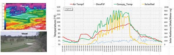 Air and Turf Temperatures in a section of fairway.