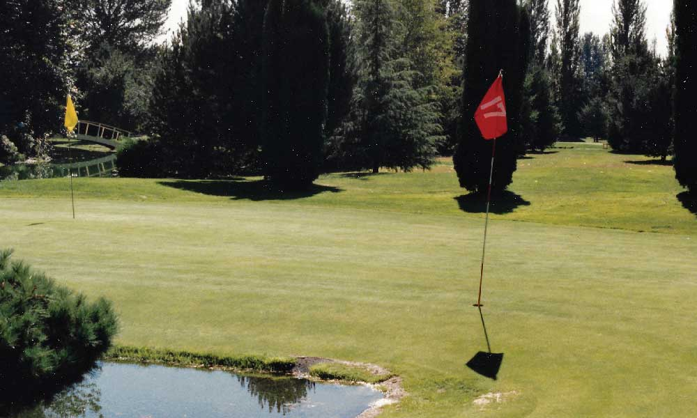 One of the Crazy Greens at Lakeview Challenge