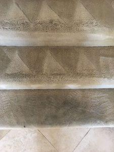 carpet cleaning calabasas