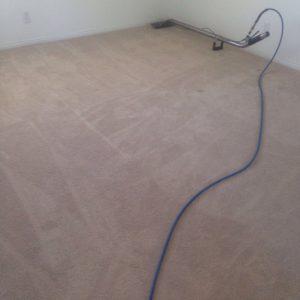 carpet cleaning Mar Vista
