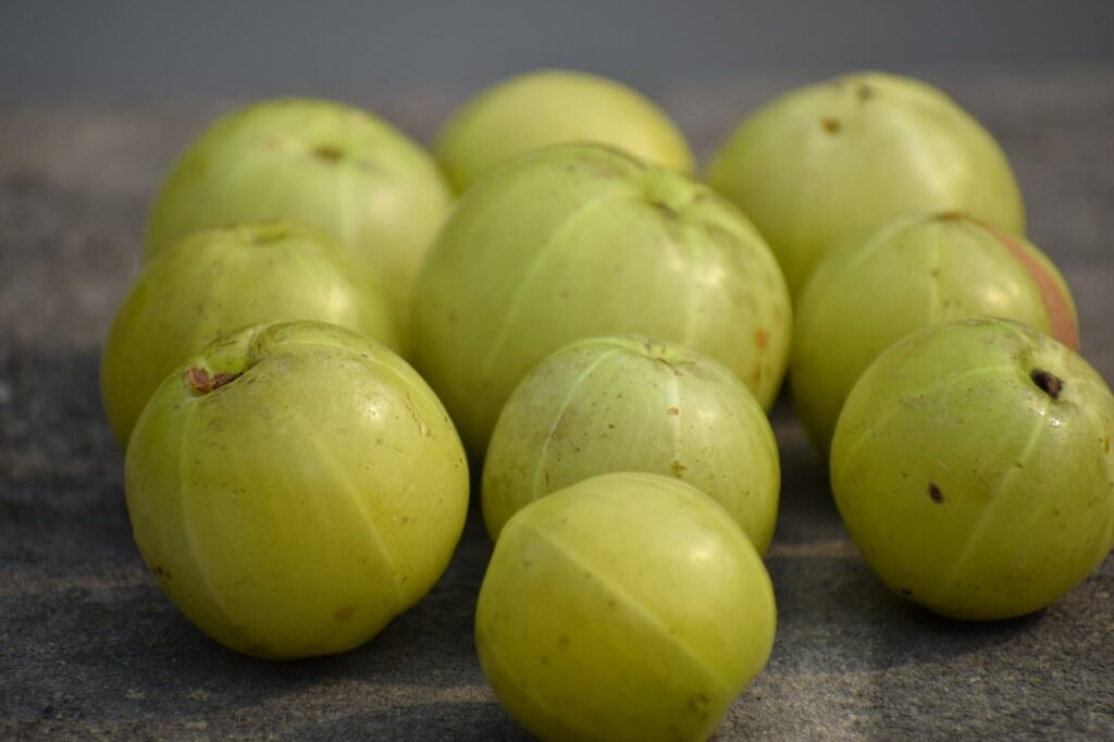 Amla Fruit - Beneficial for maintaining good health