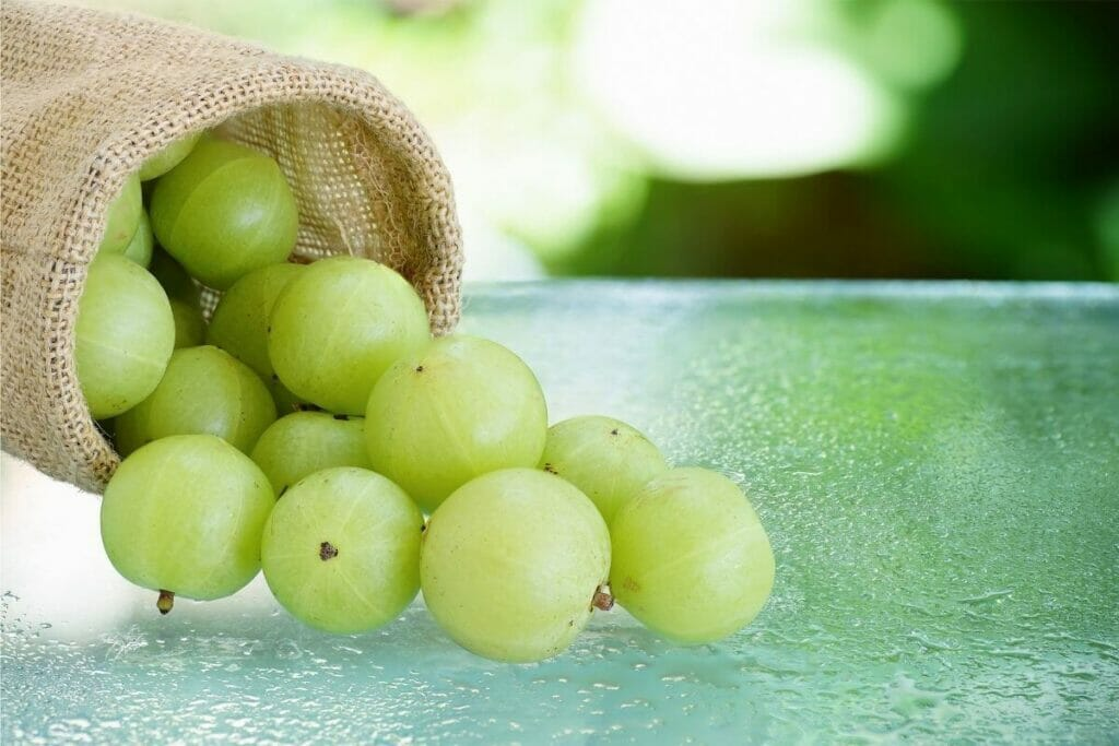 Indian gooseberry aka amla - beneficial for general health