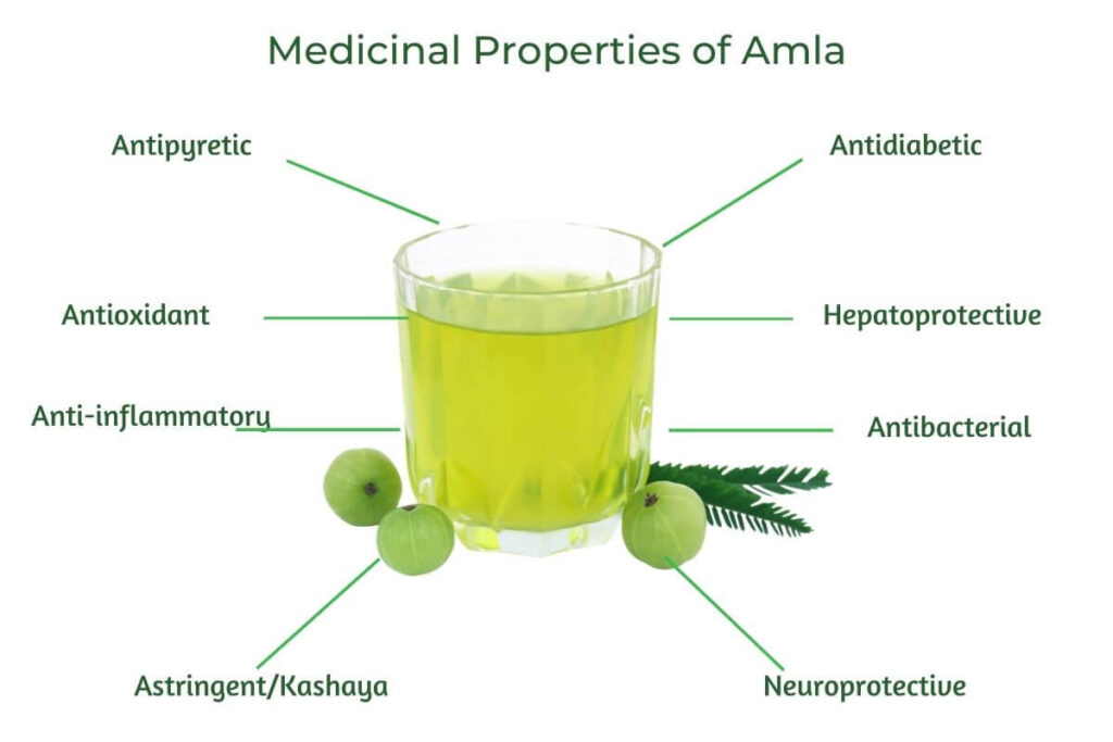 Infographic illustrating Medicinal Properties and benefits of Amla along with an image of Amla juice