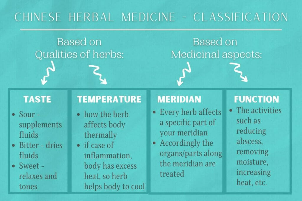Infographic on how chinese herbal medicine is classified