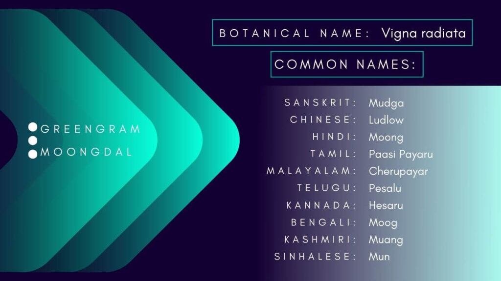 Infographic of botanical and common names of green gram