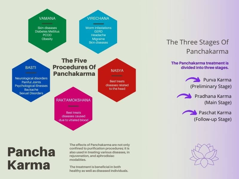 Infographic on Panchakarma procedures and stages