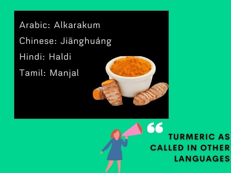 Infographic that mentions Turmeric's names in Chinese, Arabic, Hindi, and Tamil languages