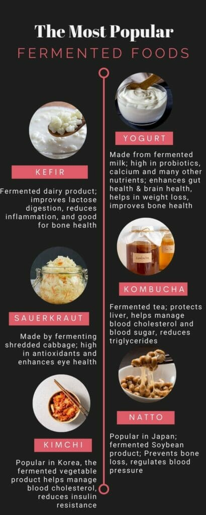 Infographic on popular fermented foods