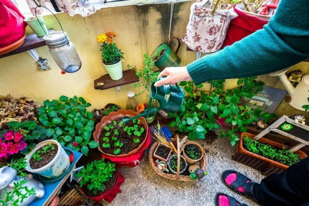 Woman watering beautiful home garden
