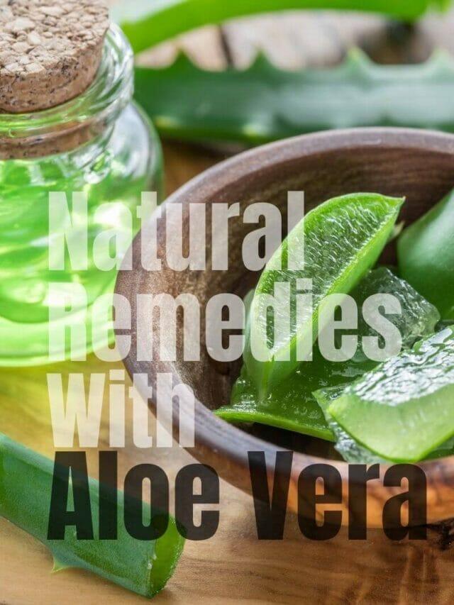 Fantastic Aloe Vera Natural Remedies You Must Try!