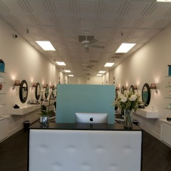 Just blow dry Reception Desk