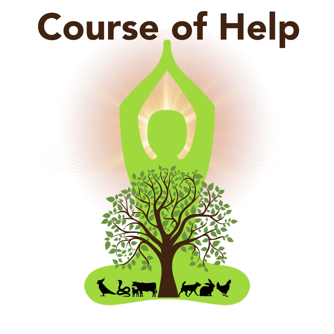 Course of help