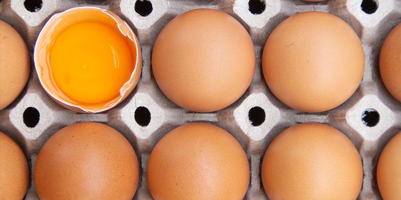 menu-eggs1